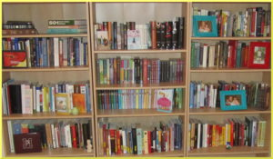 bookshelf-with-border